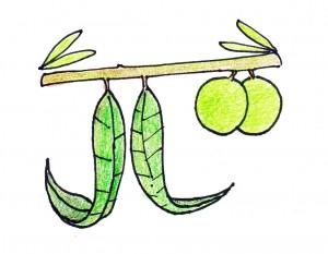 JL logo-cleaned